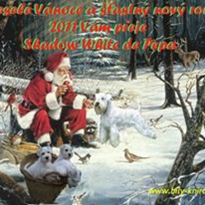 Přání k Vánocům